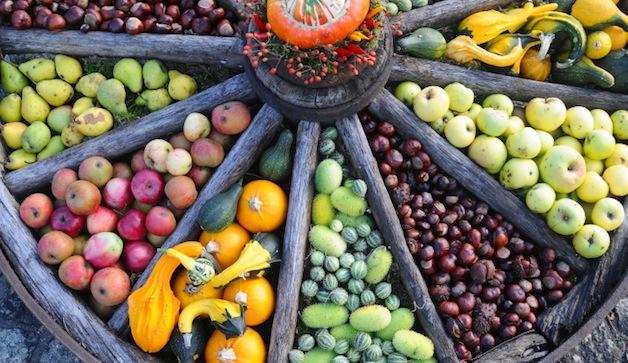 158734066-fruits-vegetables-antioxidants-market-lg
