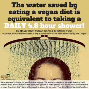 Truth or Drought a vegan diet saves a 4.8 hour shower
