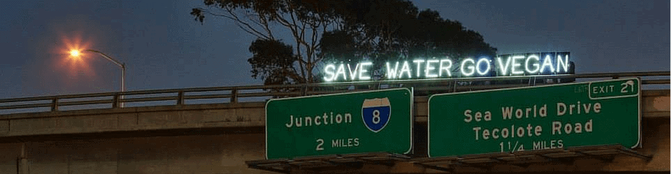 Save water go vegan light brigade